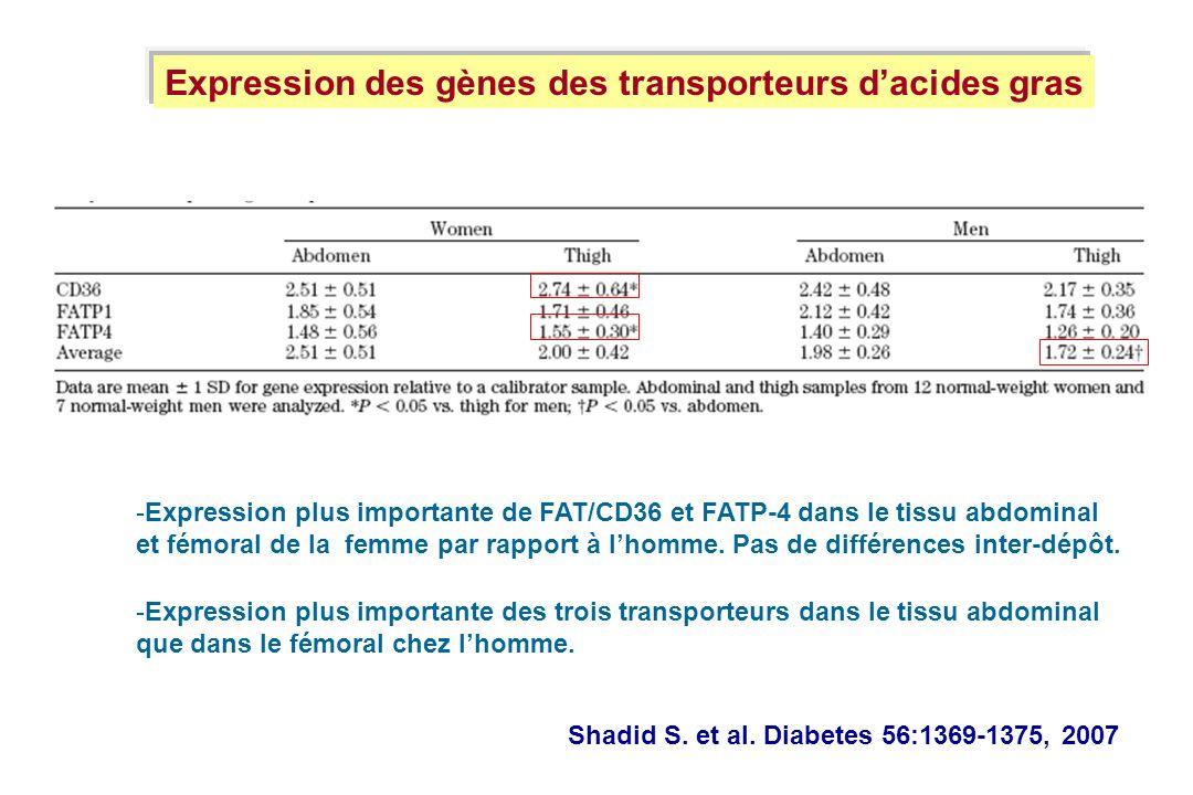 Expression des gènes des transporteurs d'acides gras