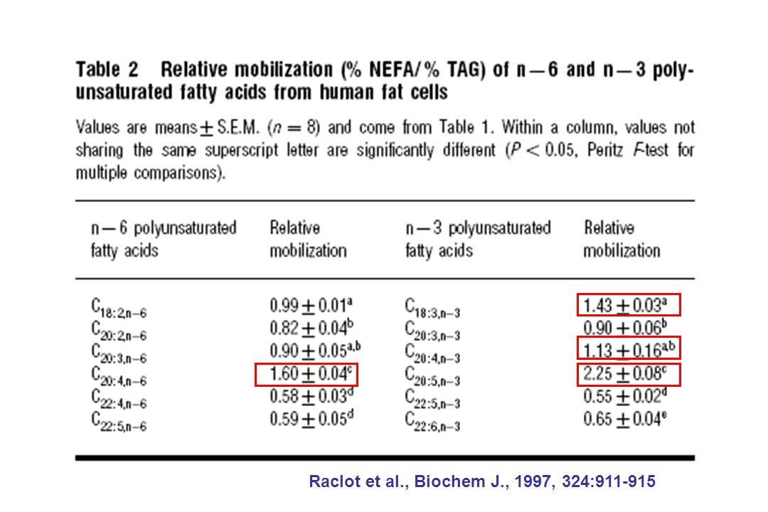 Raclot et al., Biochem J., 1997, 324:911-915