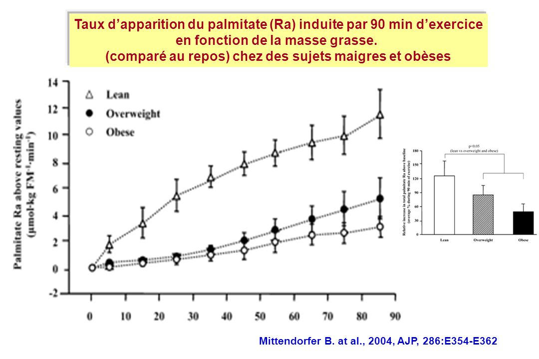 Taux d'apparition du palmitate (Ra) induite par 90 min d'exercice