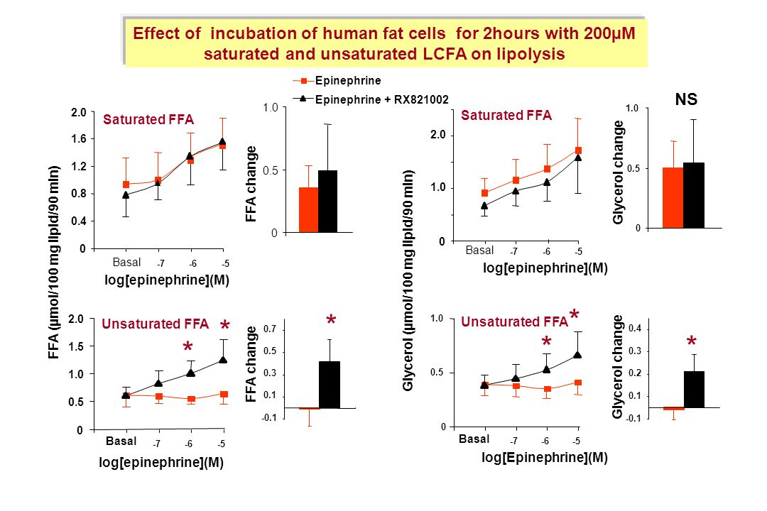 Effect of incubation of human fat cells for 2hours with 200µM