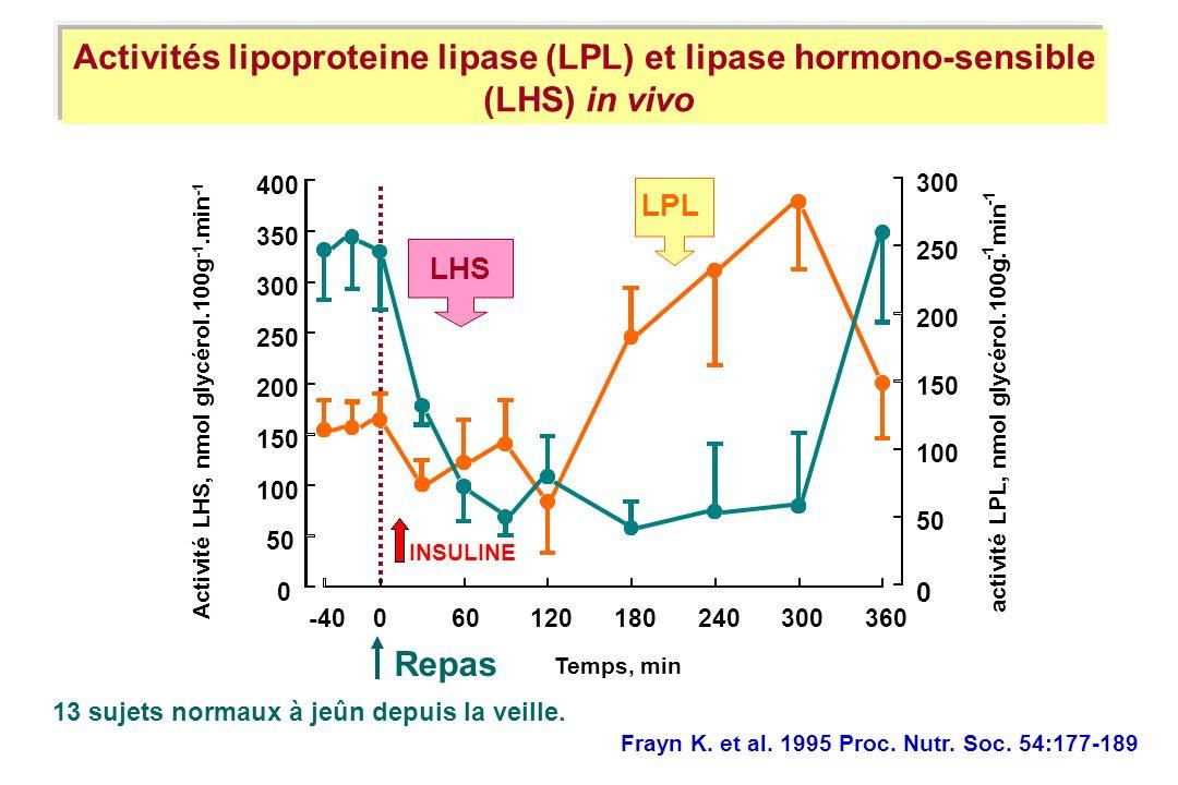 Activités lipoproteine lipase (LPL) et lipase hormono-sensible