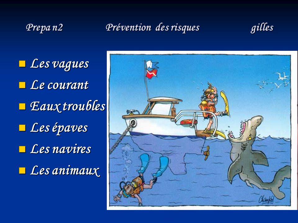 Prepa n2 Prévention des risques gilles