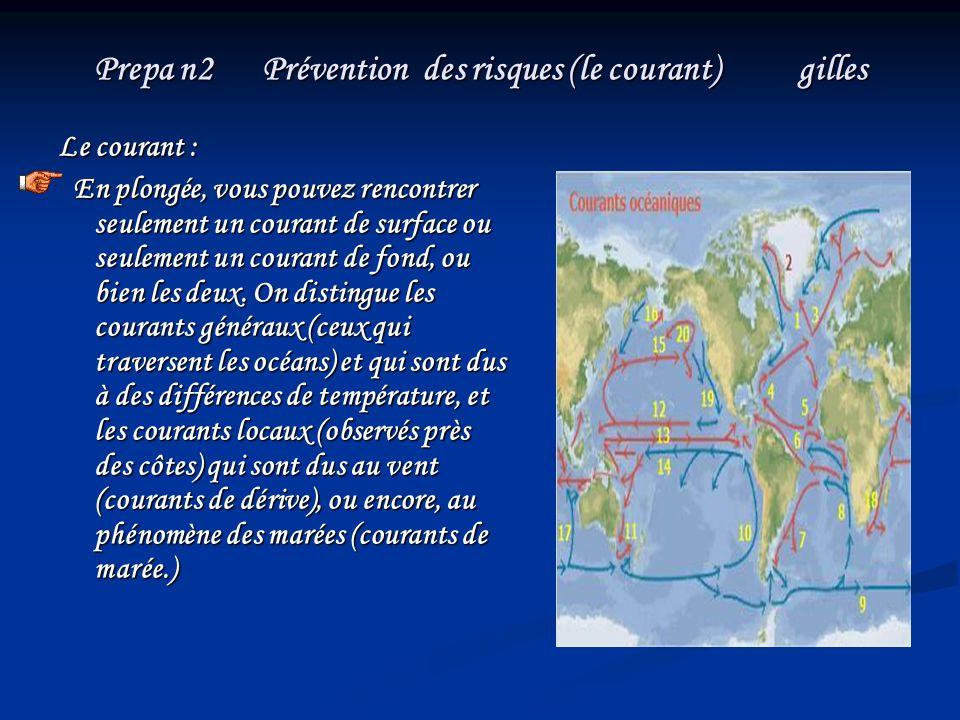 Prepa n2 Prévention des risques (le courant) gilles