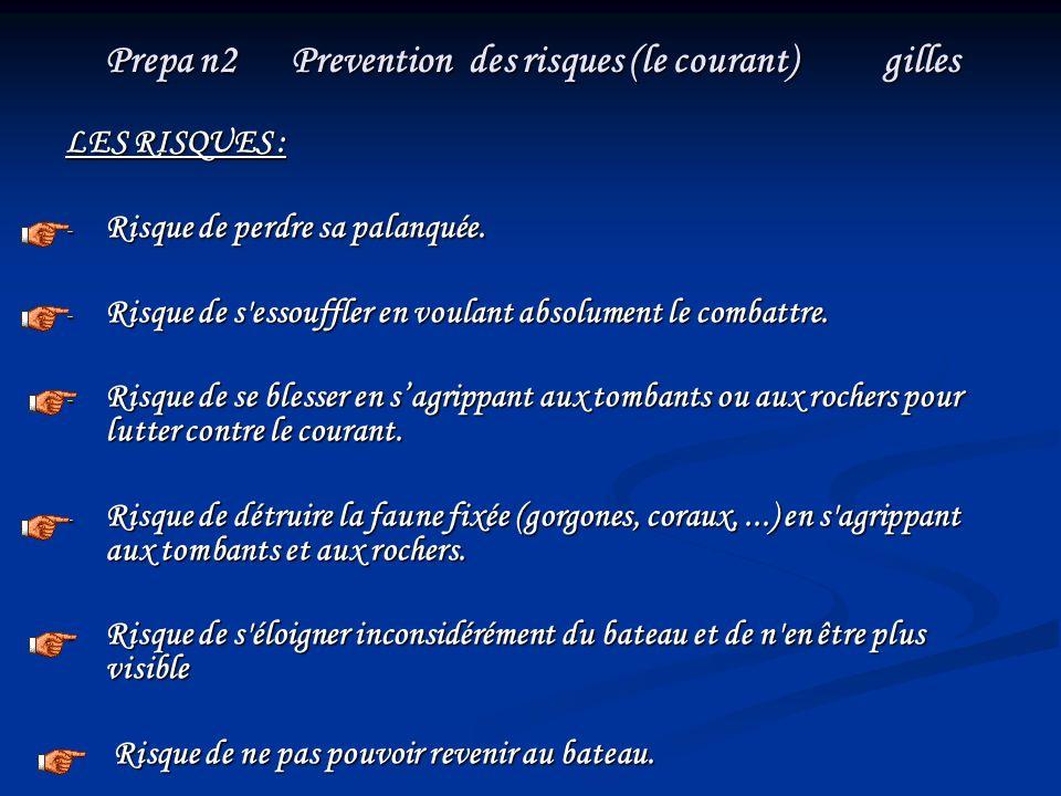 Prepa n2 Prevention des risques (le courant) gilles