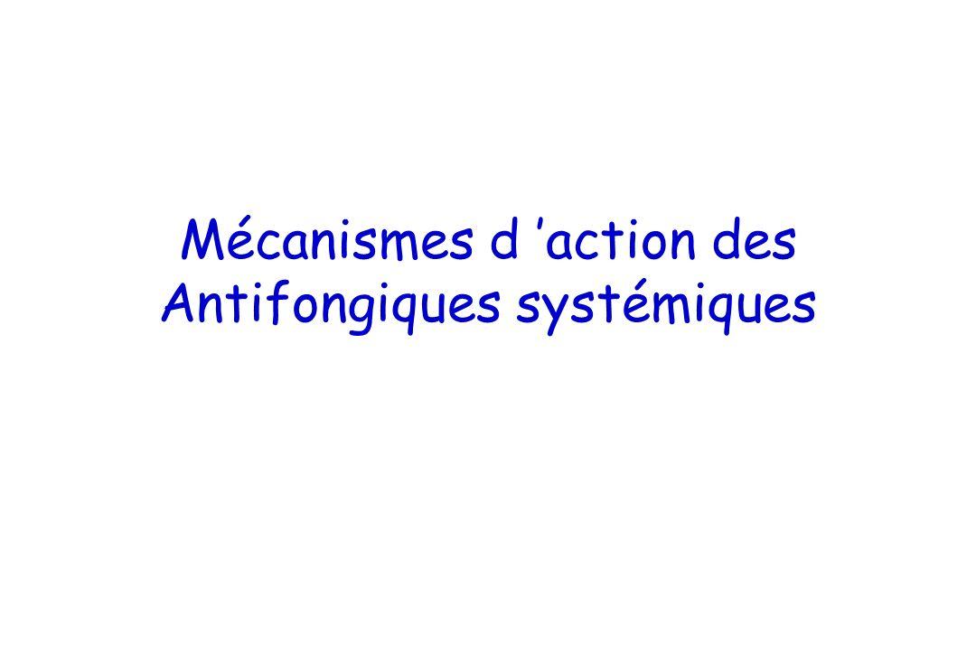Mécanismes d 'action des Antifongiques systémiques