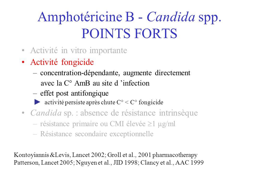 Amphotéricine B - Candida spp. POINTS FORTS