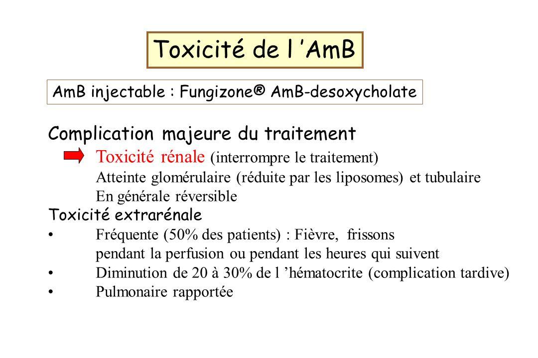 Toxicité de l 'AmB Complication majeure du traitement