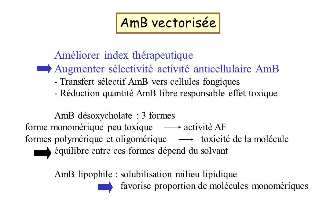 AmB vectorisée Améliorer index thérapeutique