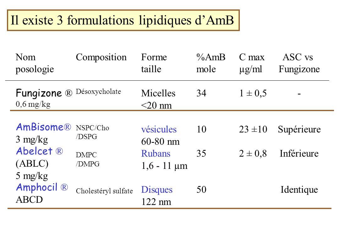 Il existe 3 formulations lipidiques d'AmB