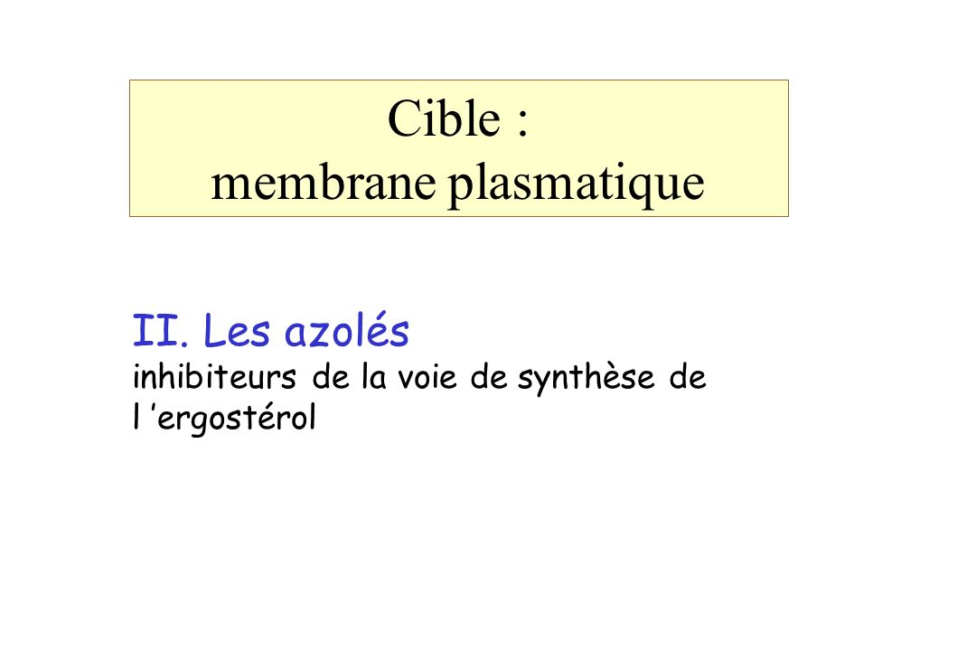 Cible : membrane plasmatique II. Les azolés