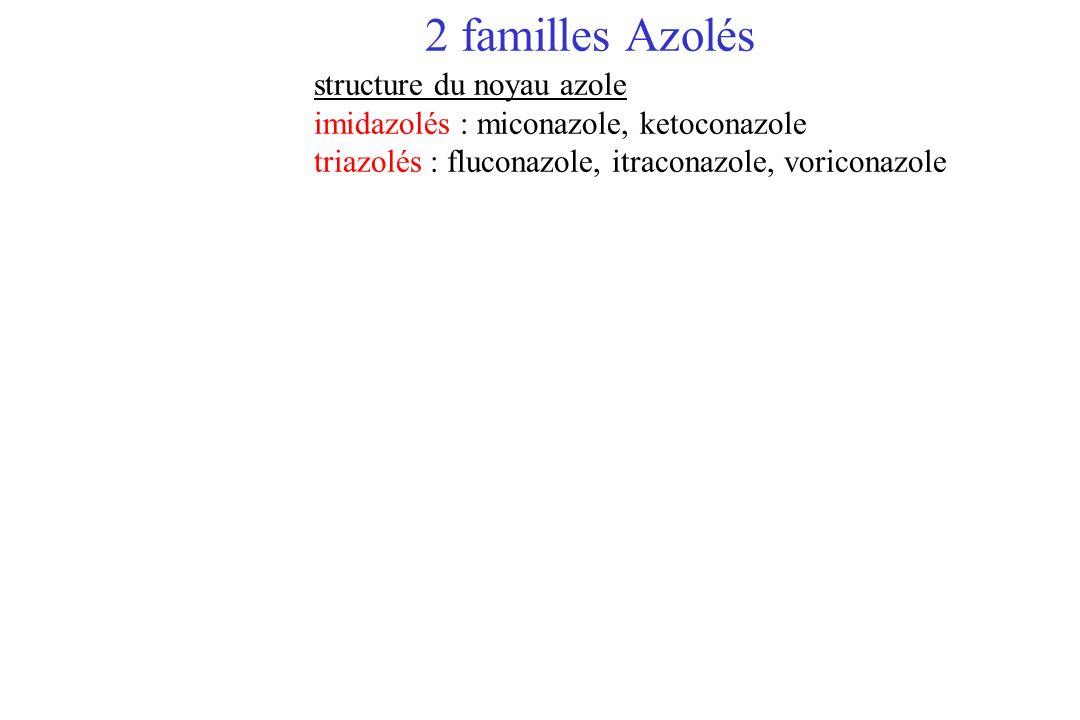 2 familles Azolés structure du noyau azole