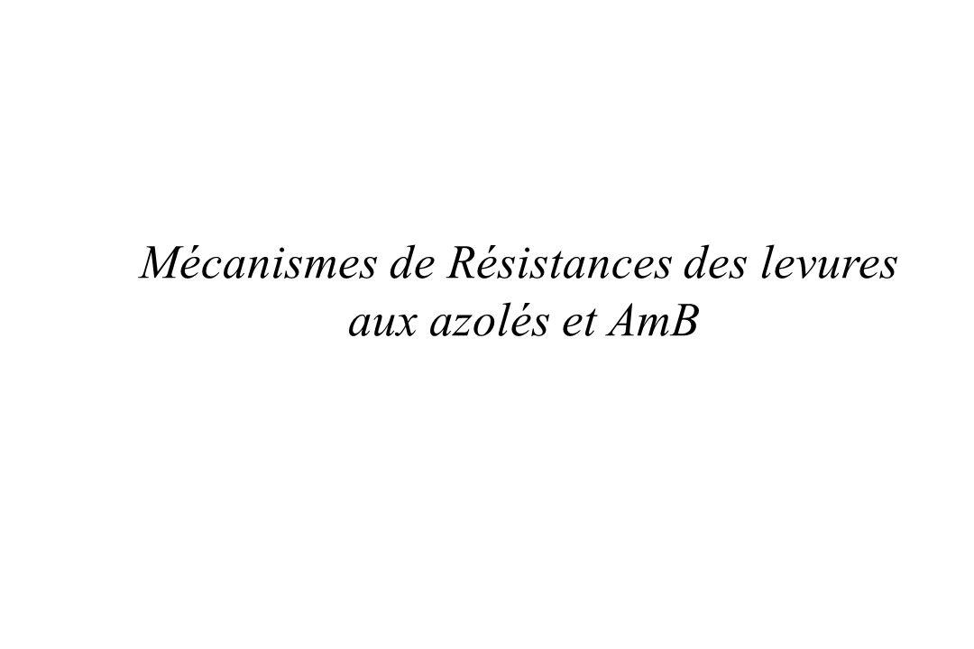 Mécanismes de Résistances des levures