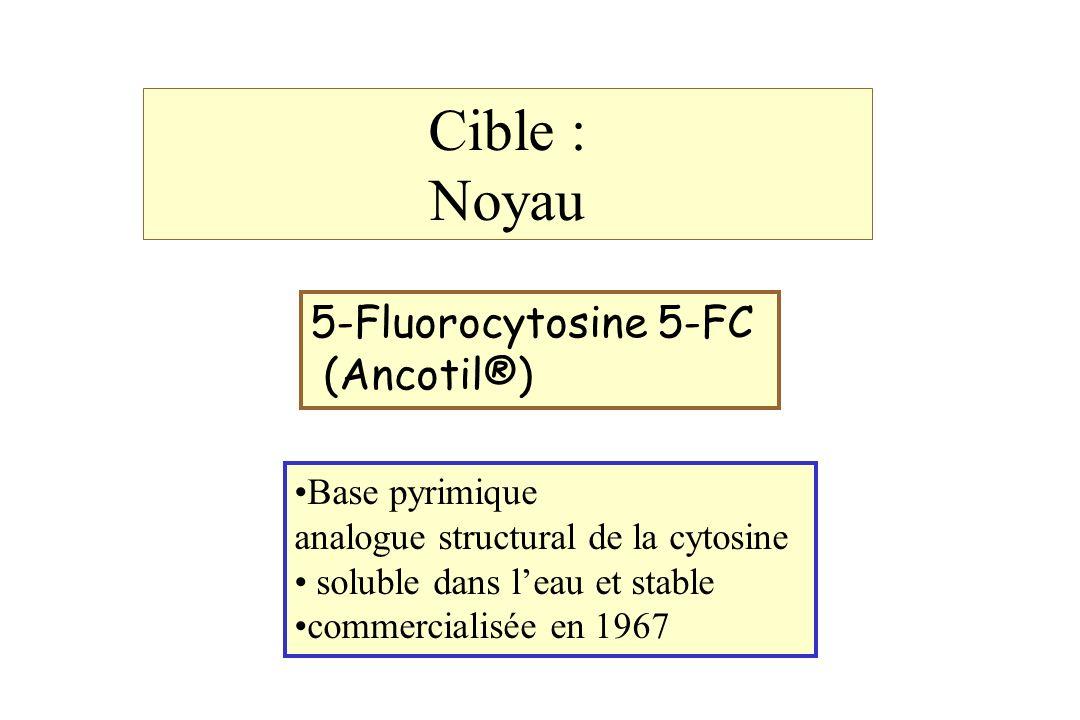 Cible : Noyau 5-Fluorocytosine 5-FC (Ancotil®) Base pyrimique