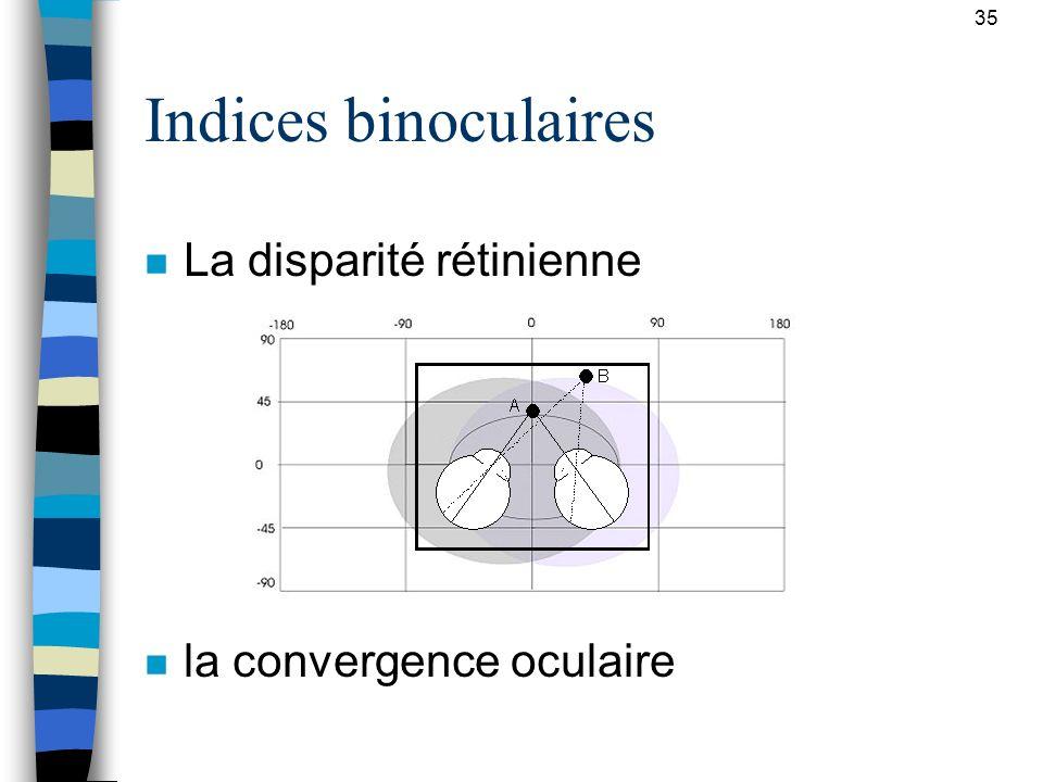 Indices binoculaires La disparité rétinienne la convergence oculaire