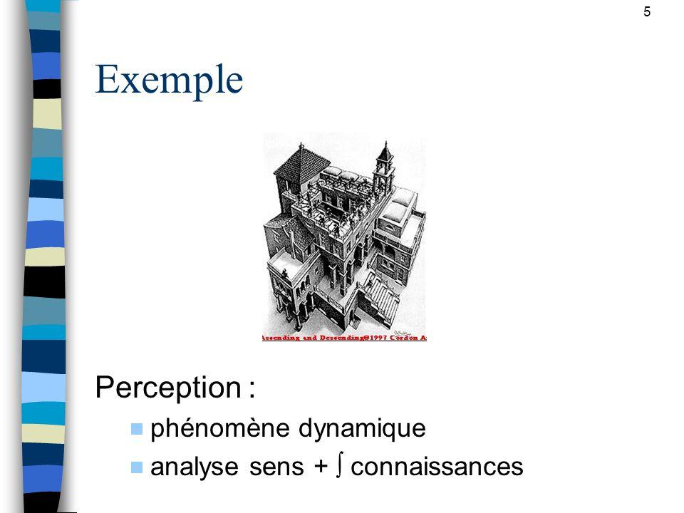 Exemple Perception : phénomène dynamique