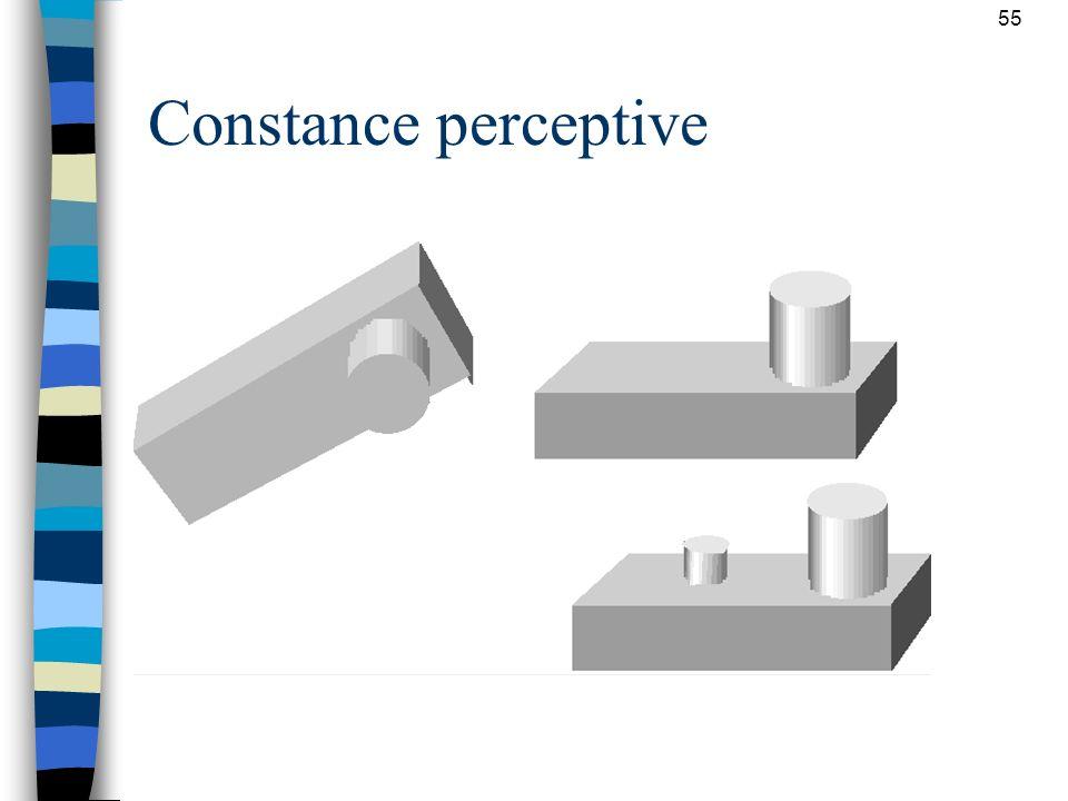 Constance perceptive Propriétés invariantes des objets perçus: