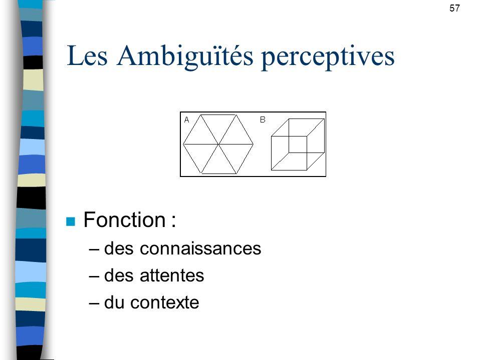 Les Ambiguïtés perceptives