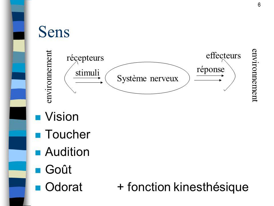 Sens Vision Toucher Audition Goût Odorat + fonction kinesthésique