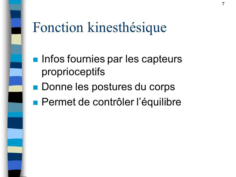 Fonction kinesthésique