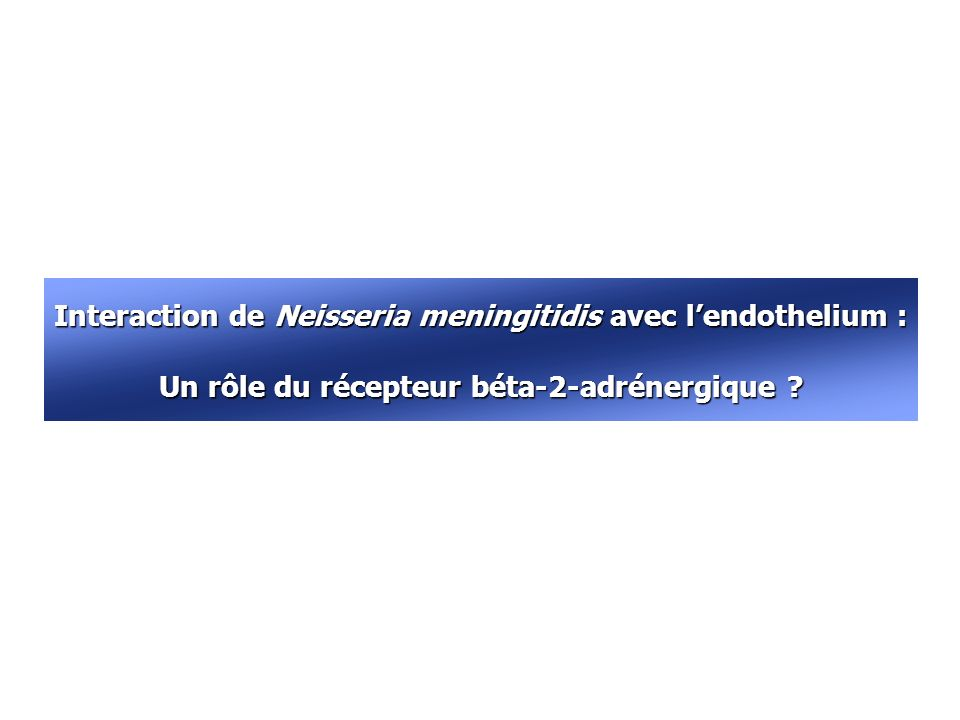 Interaction de Neisseria meningitidis avec l'endothelium :