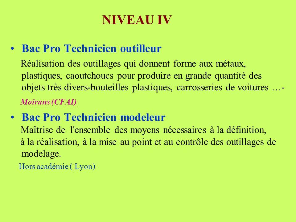 NIVEAU IV Bac Pro Technicien outilleur Bac Pro Technicien modeleur