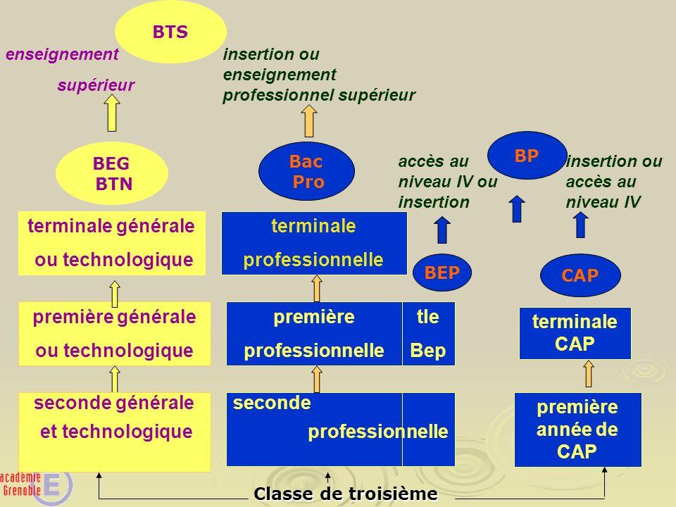 terminale générale ou technologique terminale professionnelle