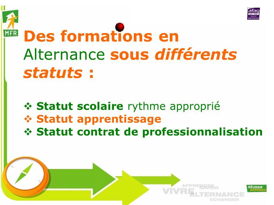 Des formations en Alternance sous différents statuts :
