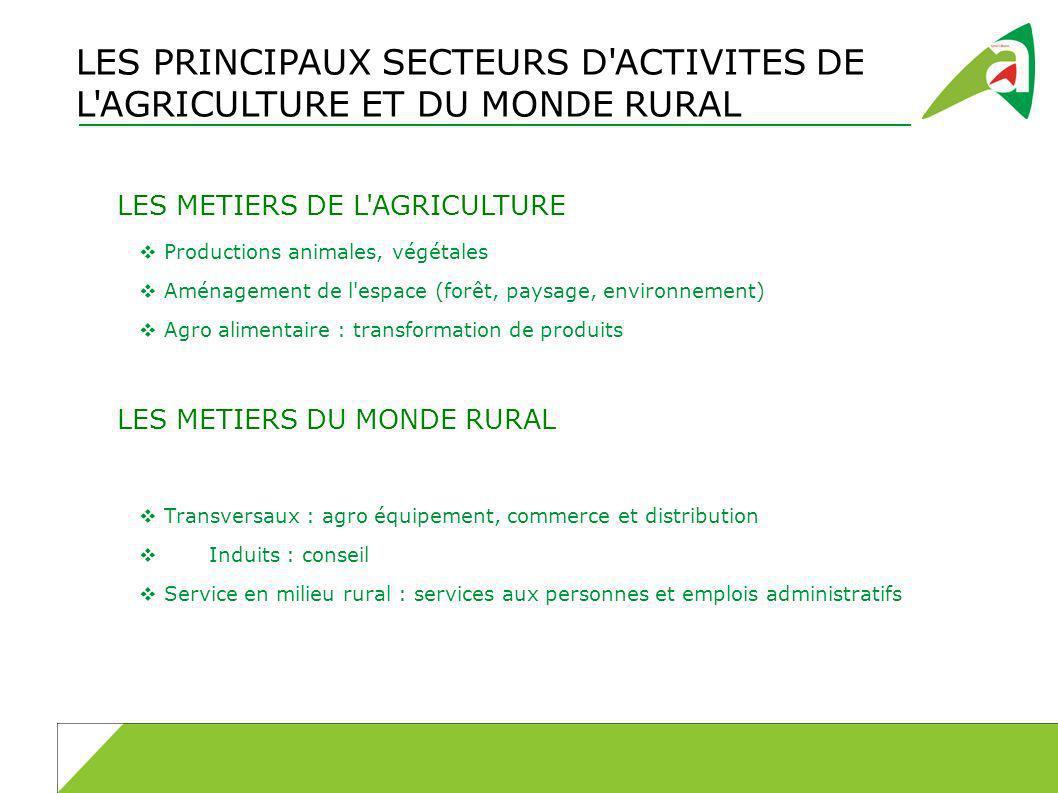 LES PRINCIPAUX SECTEURS D ACTIVITES DE L AGRICULTURE ET DU MONDE RURAL