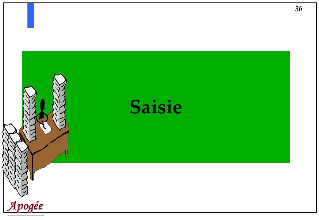Saisie