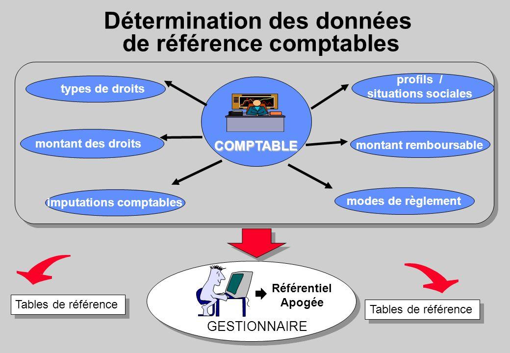 Détermination des données de référence comptables