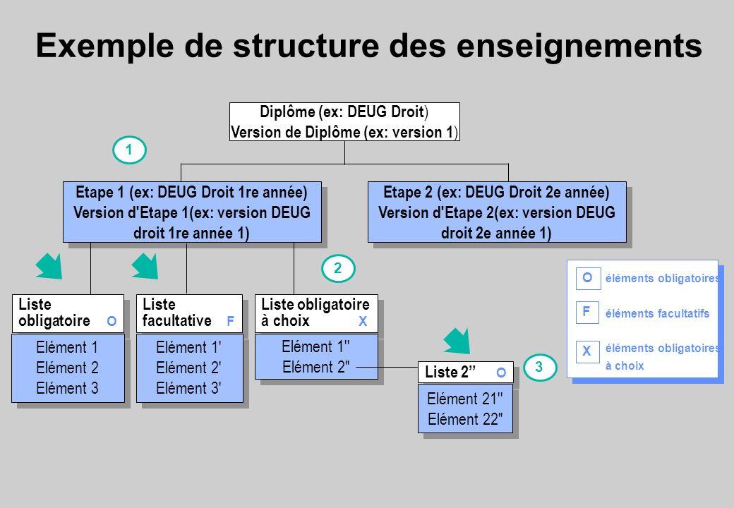 Exemple de structure des enseignements
