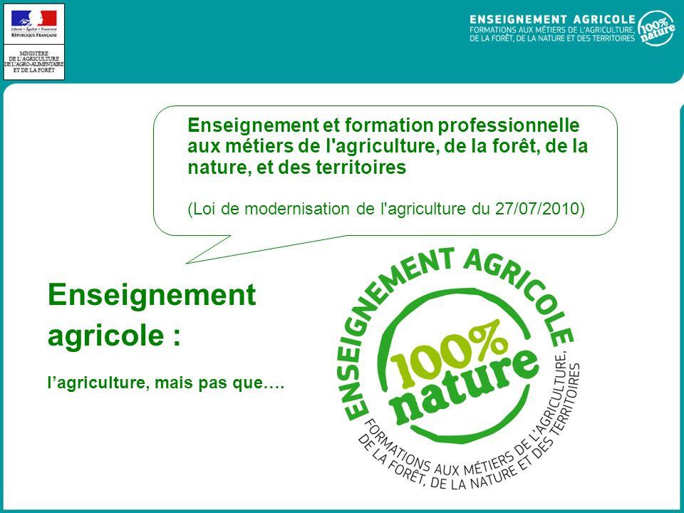 Enseignement agricole : Enseignement et formation professionnelle