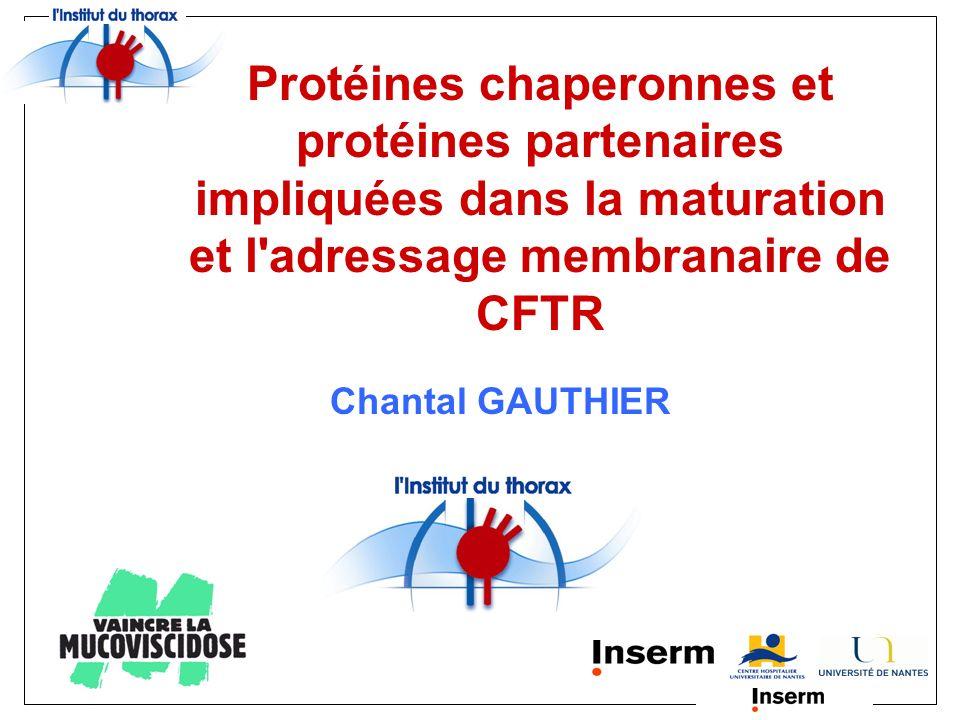 Protéines chaperonnes et protéines partenaires impliquées dans la maturation et l adressage membranaire de CFTR