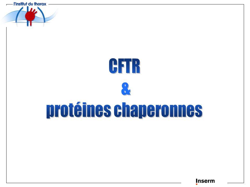 protéines chaperonnes