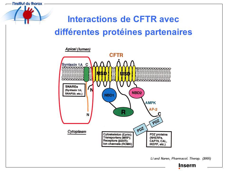 Interactions de CFTR avec différentes protéines partenaires
