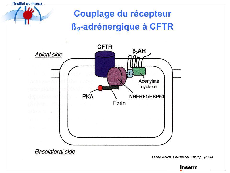 Couplage du récepteur ß2-adrénergique à CFTR