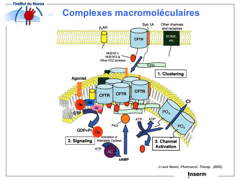Complexes macromoléculaires