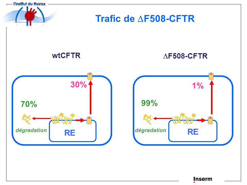 Trafic de F508-CFTR 30% 1% 99% 70% RE RE wtCFTR F508-CFTR