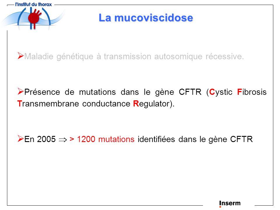La mucoviscidose Maladie génétique à transmission autosomique récessive.