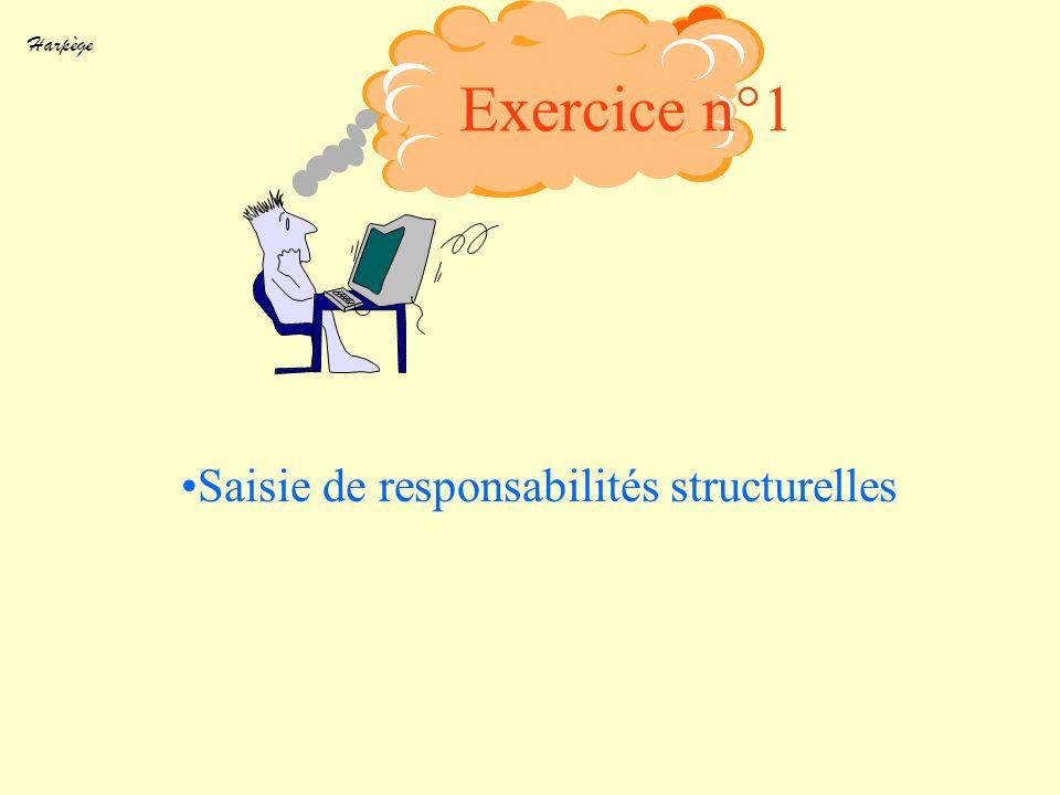 Saisie de responsabilités structurelles