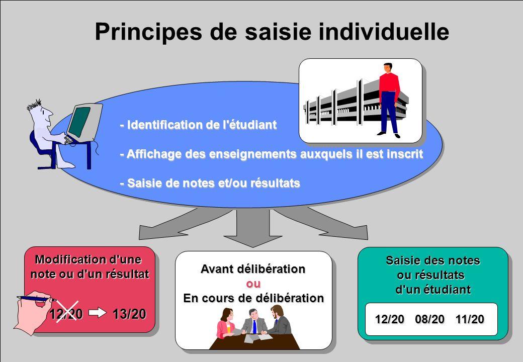 Principes de saisie individuelle