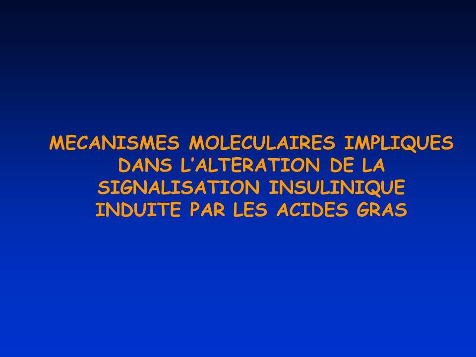 MECANISMES MOLECULAIRES IMPLIQUES