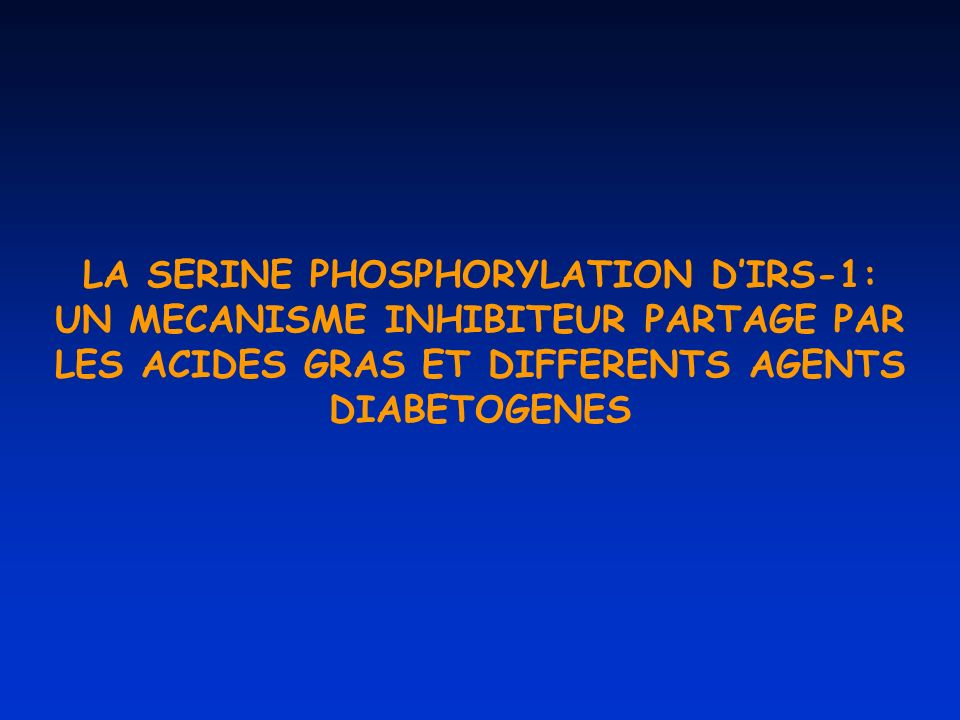LA SERINE PHOSPHORYLATION D'IRS-1: