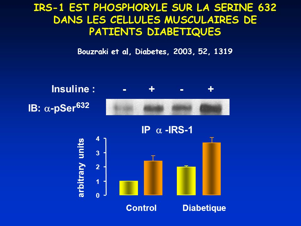 Bouzraki et al, Diabetes, 2003, 52, 1319