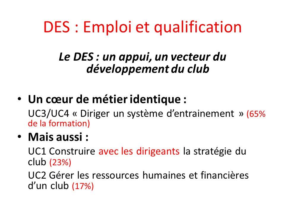 DES : Emploi et qualification