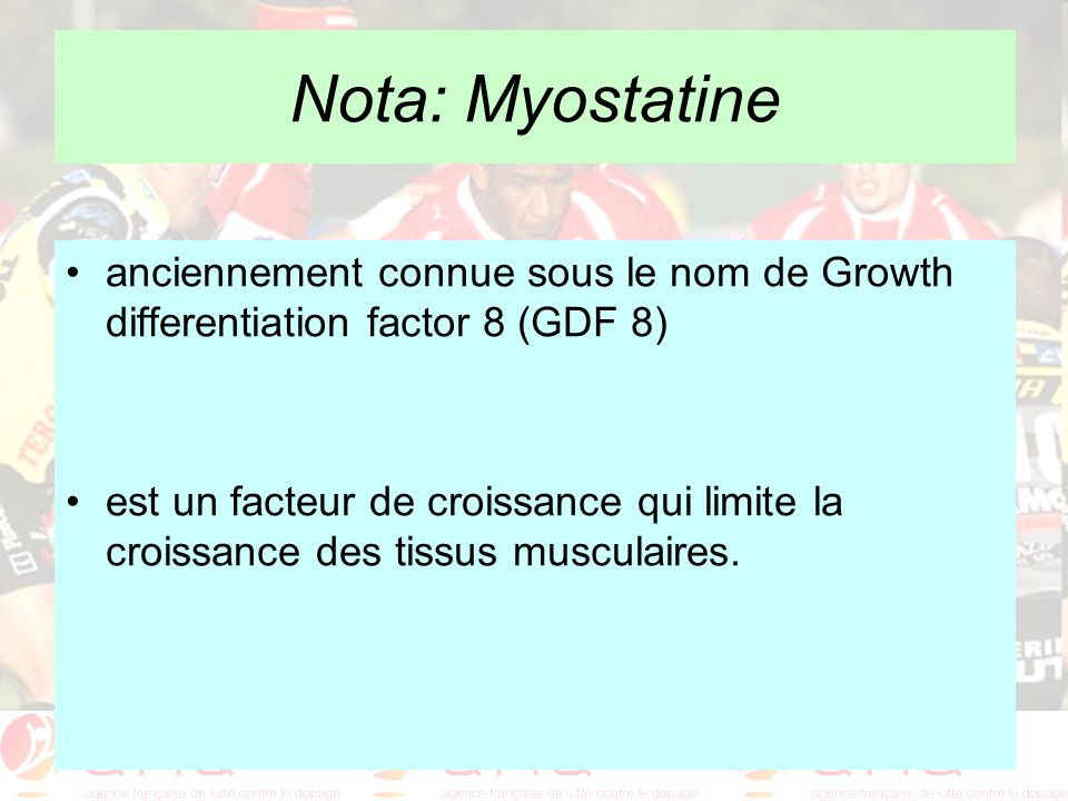 Nota: Myostatine anciennement connue sous le nom de Growth differentiation factor 8 (GDF 8)