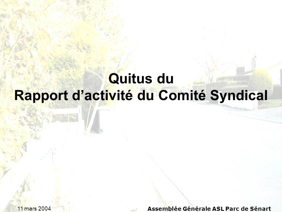 Quitus du Rapport d'activité du Comité Syndical