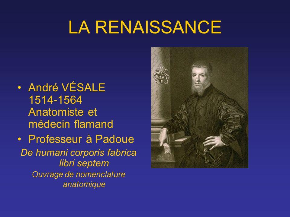 LA RENAISSANCE André VÉSALE 1514-1564 Anatomiste et médecin flamand