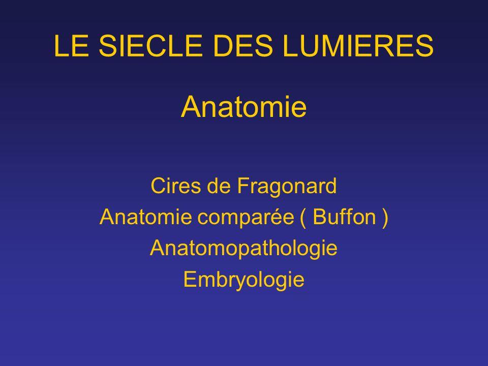 Anatomie comparée ( Buffon )