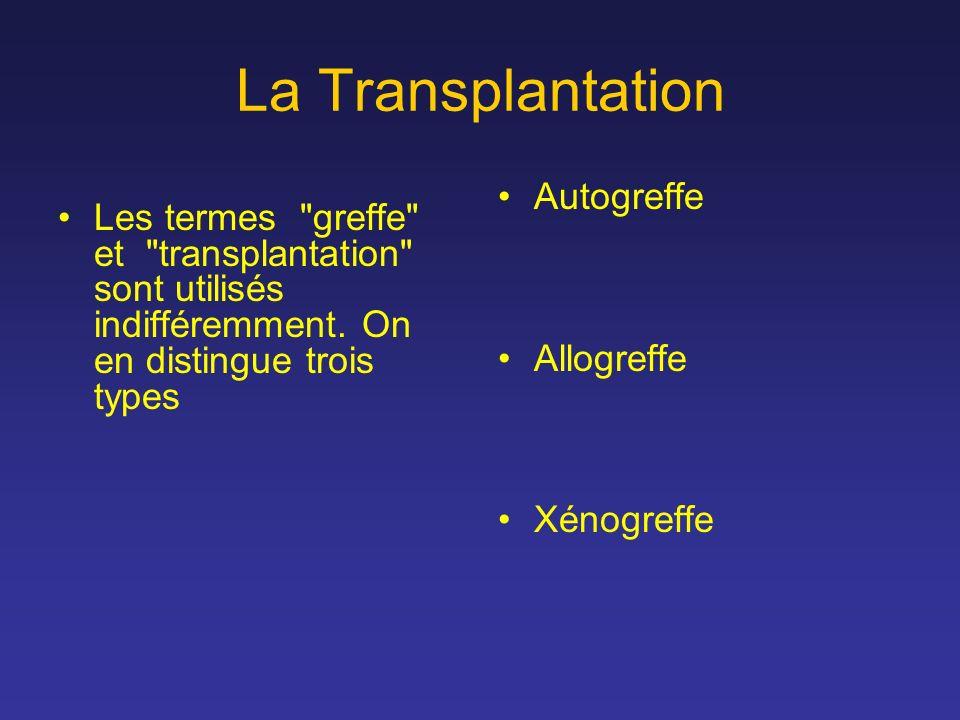 La Transplantation Autogreffe